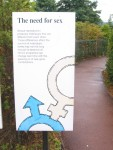 The Need for Sex